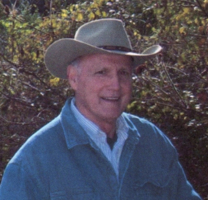 Vernon L. Sarro